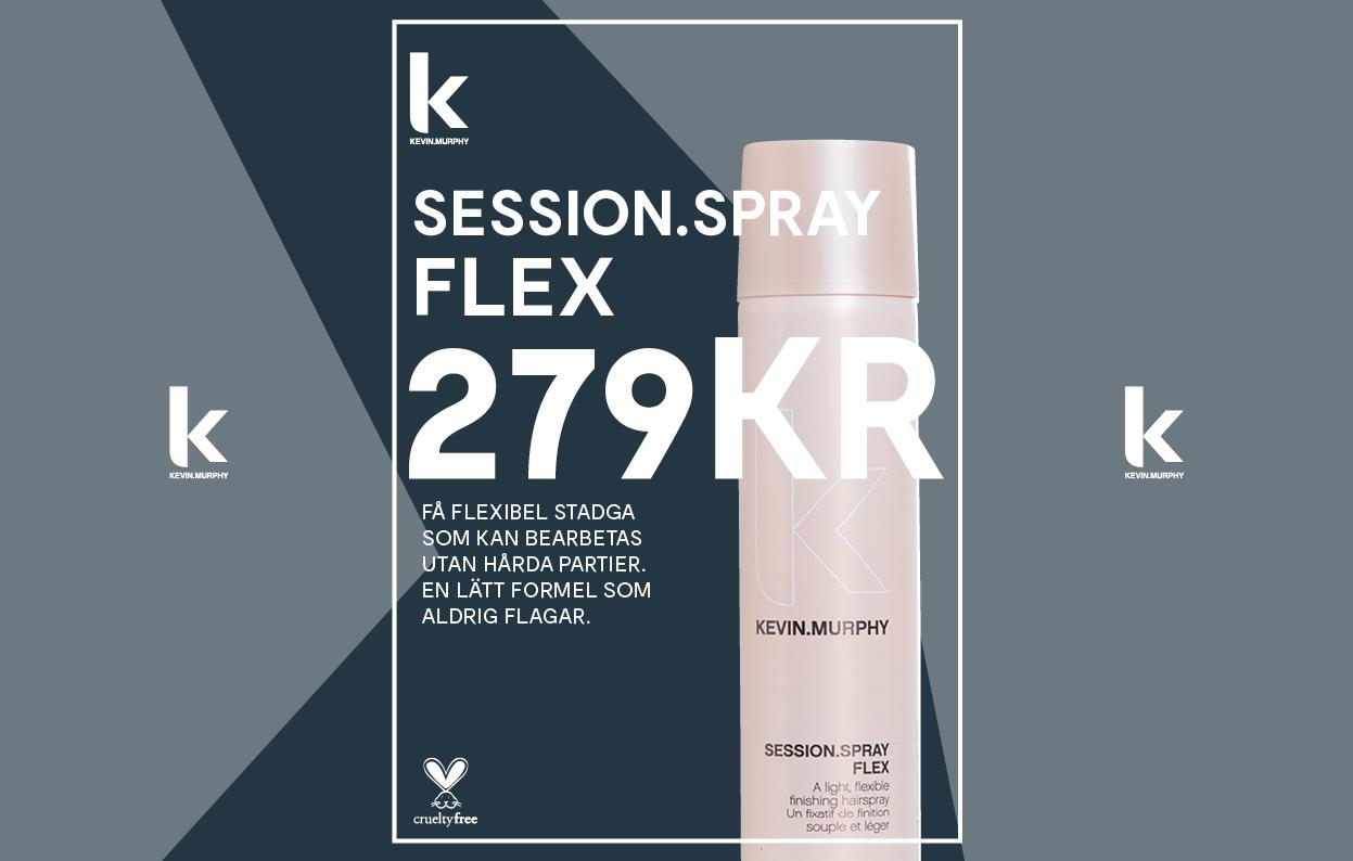 Konkavskylt Risbergs Session Spray Flex